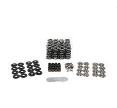 "BTR .660"" LIFT PLATINUM SPRING KIT WITH TITANIUM RETAINERS FOR GEN V LT4 - SK008"