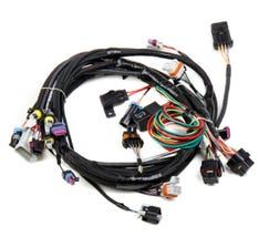 HOLLEY LS1 MAIN HARNESS - 24x - 558-102