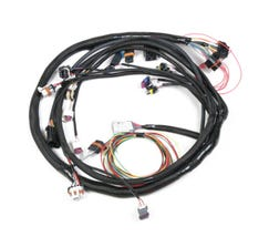 HOLLEY LS2 MAIN HARNESS - 58x - 558-103