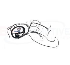 BP AUTOMOTIVE STANDALONE HARNESS - LS1/VORTEC - DBC - EV6 INJECTORS - 4L80E - SHOWSTOPPER LOOM - H308