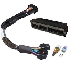 HALTECH IGNITION HARNESS - GM GEN III LS1 & LS6 TERMINATED IGNITION HARNESS - HT-045657