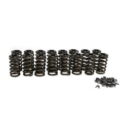 "BTR FORD 2V MODULAR SPRING KIT - .550"" LIFT - CHROMOLY RETAINERS - SK005S"