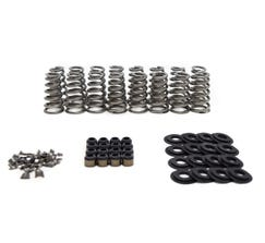 "BTR LT4 CONICAL SPRING KIT - .650"" - SK014"