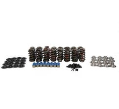 "BTR SPRING KIT FOR GEN 2 LT1/SBC - 11/32"" VALVES - SK004"