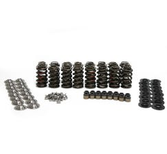 "BTR .650"" LIFT MAX PRESSURE SPRING KIT WITH TITANIUM RETAINERS (for ROLLER ROCKERS) SK002"