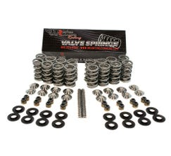 "BTR .650"" ULTIMATE RPM SPRING KIT WITH TITANIUM RETAINERS - SK703"